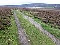Footpath on Barden Moor near Upper Barden Reservoir - geograph.org.uk - 1490864.jpg