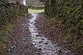 Footpath to Hollins - geograph.org.uk - 1670828.jpg