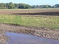 Footpath to Oldlands Copse - geograph.org.uk - 1001412.jpg