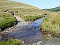Ford over the Afon Tywi near Drum Nantyrhelyg, Powys - geograph.org.uk - 1572101.jpg