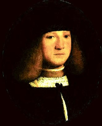 Personal life of Leonardo da Vinci -  Francesco Melzi, by Boltraffio, c. 1510