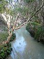 Frazier Island - Eli Creek (4097342897).jpg