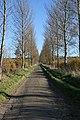 Frieston Heath Lane - geograph.org.uk - 281545.jpg