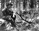 Göring Jagd toter Hirsch ca. 1935.jpg