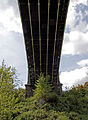 Galton Bridge 3 (4624918100).jpg