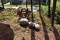 GartenTulln03.jpg