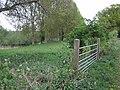 Gate and Riverside Meadow - geograph.org.uk - 412808.jpg