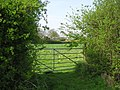 Gate near Cockerell's Hall Buxhall - geograph.org.uk - 789402.jpg