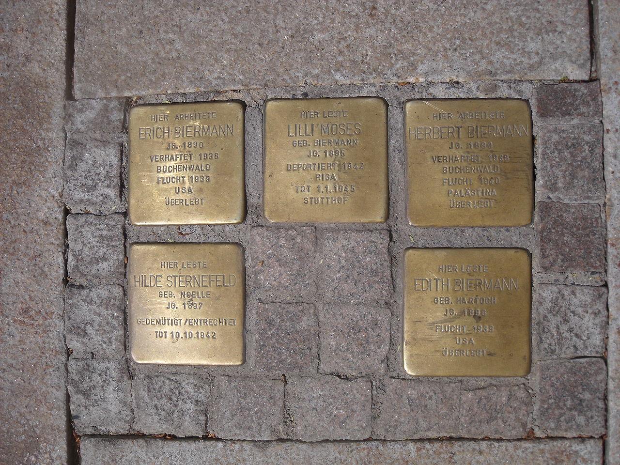 Gera Stolpersteine Biermann 2.jpg
