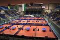 German Open Magdeburg 3.JPG
