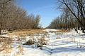 Gfp-minnesota-valley-state-park-marshes.jpg