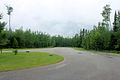 Gfp-minnesota-voyaguers-national-park-road-and-forest.jpg