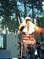 Ghostface Intonation Music Festival 06 CAM 3853 (174538834).jpg