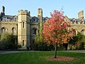 Gisborne Court. Peterhouse.jpg