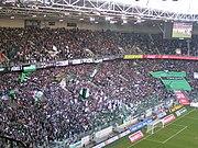 Gladbach Fans in Kurve