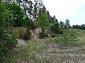 Gmina Giby, Poland - panoramio (103).jpg