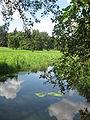 Gołuchów park - aboretum (2).jpg