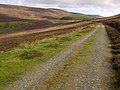 Governor Loch's road. Isle of Man. - geograph.org.uk - 42773.jpg