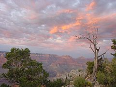 Grand Canyon 29 Aug 2001 22-08.jpg
