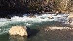 File:Green River in Kanaskat-Palmer State Park, 03.webm