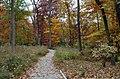 Green Spring Gardens in November (22765463616).jpg