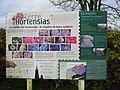 Guiquelleau Terre Hortensias.jpg