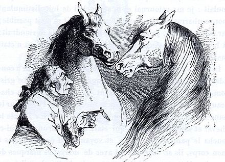 Gulliver in discussion with Houyhnhnms (1856 illustration by J.J. Grandville). Gulliver u Hvajninimu - Grandville.jpg