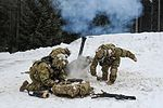 HHC 2-503rd IN, 173rd AB Mortar mission 170128-A-BS310-145.jpg