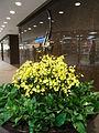HK Land Central 中環 交易廣場 Exchange Square 01 lobby hall April-2012.JPG