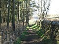 Hadrian's Wall Path east of Milecastle 24 - geograph.org.uk - 1308464.jpg