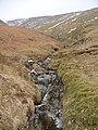 Hag Gill - geograph.org.uk - 74279.jpg