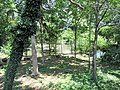 Hagerstown City Park 08.jpg