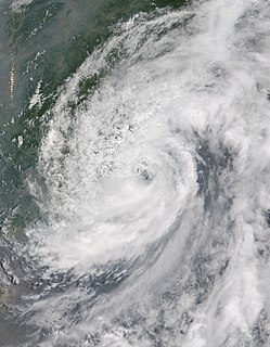 Tropical Storm Hagibis (2014) Pacific typhoon in 2014
