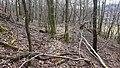Halde Grube Fausta Wilnsdorf-Wilden2.jpg