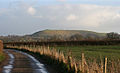 Hambledon Hill from North Dorset Trailway 20080107.jpg