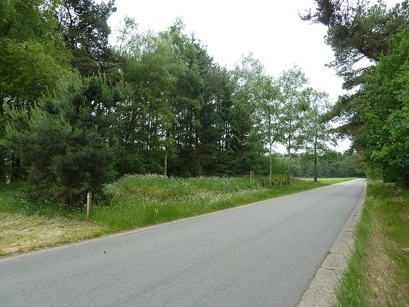 Grafheuvels Grote Haart, Hamont-Achel, België
