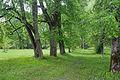 Harmi moisa park 01.jpg