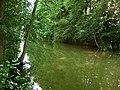 Havel-zwischen-Useriner-u-Gr-Labussee-11-IV-2007-269.jpg