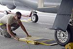 Hawk spots its prey 150308-F-BW907-115.jpg