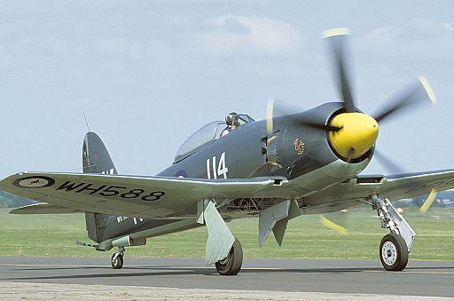 Hawker Sea Fury FB11 AN1233428