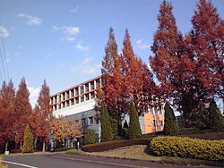 Head office of Kasumi Co., Ltd.jpg