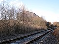 Heathfield clay works beside the disused railway line - geograph.org.uk - 1660233.jpg