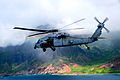 Helicopter Sea Combat Squadron (HSC) 4 140714-N-UN830-135.jpg