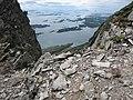 Herøy - panoramio.jpg