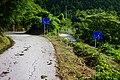 Higashiishihara, Tosa, Tosa District, Kochi Prefecture 781-3333, Japan - panoramio (1).jpg