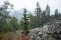 Hiking to Malinovaya (21229101701).jpg