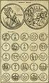 Historia Byzantina duplici commentario illustrata - prior, Familias ac stemmata imperatorum constantinopolianorum, cum eorundem augustorum nomismatibus, and aliquot iconibus - praeterea familias (14767772045).jpg