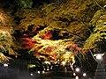 Hiyoshi Taisha Momiji 2.jpg