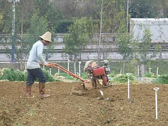 Agriculture in China - Ploughing with a motor plough, Yuxi, Yunnan