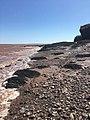 Hopewell Rocks Provincial Park in low tide.jpg